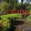 Irish National Stud and Japanese Gardens