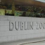 DublinZoo2007_00