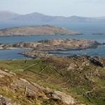 Irland_parknasilla_ring_of_kerry