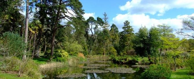Cork Wildlife Park